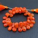 Carnelian 10-12mm Pear Shape Briolette Strand