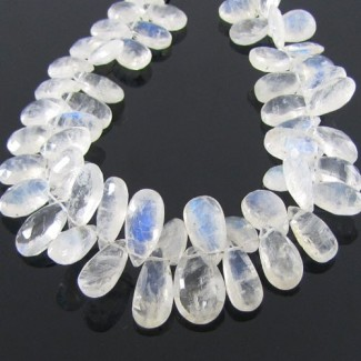 Rainbow Moonstone 12-15mm Pear Shape Briolette Strand