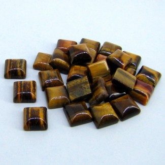 181.25 Cts. Tiger Eye 11mm Smooth Square Shape Cabochon Parcel (27 Pcs.)